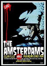 Concert The Amsterdams in club Flex in Arad