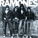 Legende: Dead Kennedys, Bad Religion, The Clash , Ramones