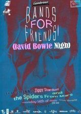 BandsForFriends: David Bowie Night in Gambrinus Pub
