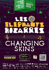 Les Elephants Bizarres si Changing Skins: Concert la Bucuresti in club Why Not pe 1 februarie