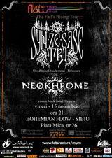 Concert Syn Ze Sase Tri la Sibiu, in Bohemian Flow Art&Pub, pe 15 Noiembrie