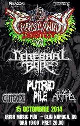 Transylvanian Deathfest VII in Cluj Napoca