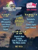 Luna Amara Fest - 20 de ani - Summer Camp Brezoi