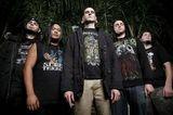Sufokate lanseaza un nou album