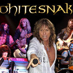 Whitesnake nu vor concerta in 2010 insa pregatesc un nou album