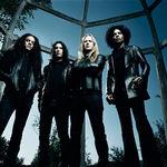 Mike Inez, basistul Alice In Chains, discuta despre echipamentul EMG