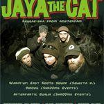 Concert Jaya The Cat in Suburbia