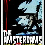 Concert The Amsterdams in club Flex in Arad