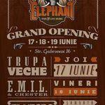 Concert E.M.I.L. si Chester in Elephant, Bucuresti