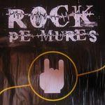 Poze de la Rock Pe Mures 2010