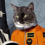 Klaxons dezvaluie identitatea pisicii spatiale de pe coperta albumului