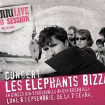 Les Elephants Bizzares canta la GuerriLIVE Radio Session