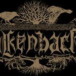 Falkenbach lanseaza un nou album