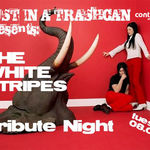 White Stripes tribute night in club Control din Bucuresti