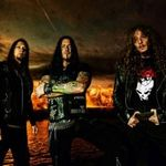 Destruction au fost intervievati in California (video)