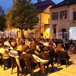 Zilele Filmului Romanesc: numar record de spectatori la Baia Mare