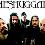 Meshuggah lucreaza la un nou album