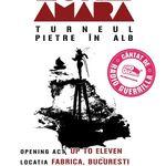 Luna Amara lanseaza noul album sambata in Fabrica