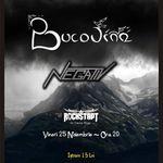 Concert Bucovina si N.E.G.A.T.I.V. in Brasov
