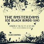 Concert The Amsterdams si Ice Black Birds in Control