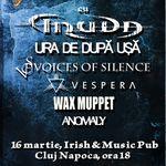 STREAM FEST in martie la Cluj-Napoca