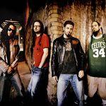 Arctic Monkeys si Korn canta la Exit festival