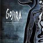 Detalii despre noul DVD GOJIRA