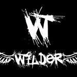 Trupa Wilder castiga preselectia la Festivalul Imagine