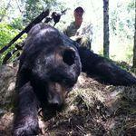 Solistul Jungle Rot a stabilit recordul pentru cel mai mare urs ucis (foto)