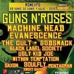 Fete, tobe si Machine Head