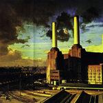 Se implinesc 36 de ani la lansarea Pink Floyd - Animals