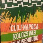 Concert Kaisfer Chiefs si Ska-P la Peninsula 2013 la Cluj-Napoca