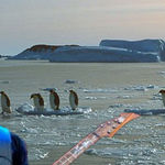 Metallica vor sustine un concert in Antarctica?