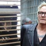 Fostul baterist Guns N Roses lupta pentru drepturile ursilor