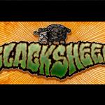 Interviu Rapid cu Blacksheep