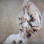 Septicflesh au lansat un clip pentru '3rd Testament (Codex Omega)'