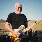 David Gilmour a strans 21 de milioane de dolari pentru protejarea mediului
