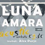 Luna Amara Concert Live Streaming din Music Hub