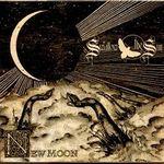 Asculta fragmente de pe viitorul album Swallow The Sun