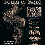 Rock N Iasi 2009 ii are pe Negura Bunget drept cap de afis!