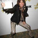Steve Tyler se retrage din Aerosmith pentru a scrie o autobiografie?
