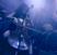 Tiarra pictures Lansare de album Tiarra in club Fabrica
